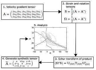 Generation of synthetic velocity gradient tensors